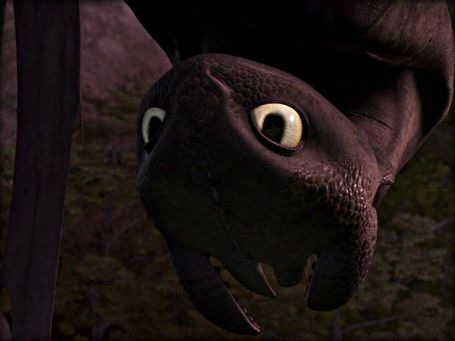 da31d61095dd4906fa446040ad3975c0--httyd-dragons-dreamworks-dragons