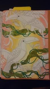 Duo de toucans (3)